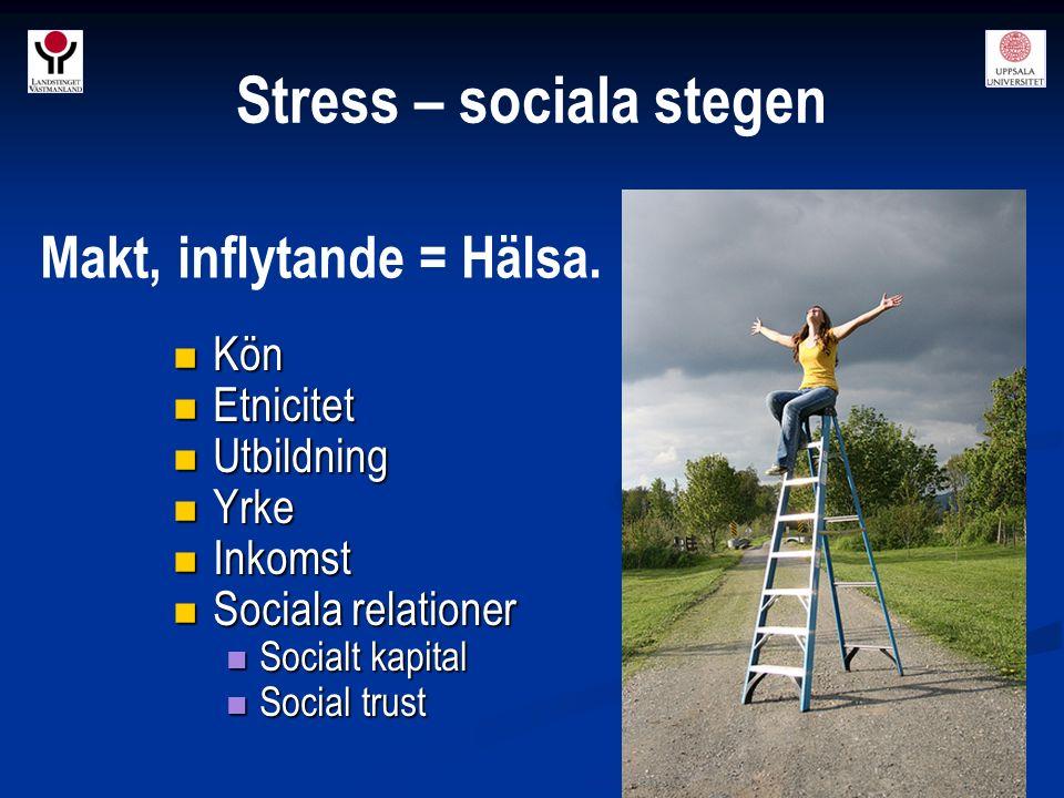 Stress – sociala stegen Kön Kön Etnicitet Etnicitet Utbildning Utbildning Yrke Yrke Inkomst Inkomst Sociala relationer Sociala relationer Socialt kapi