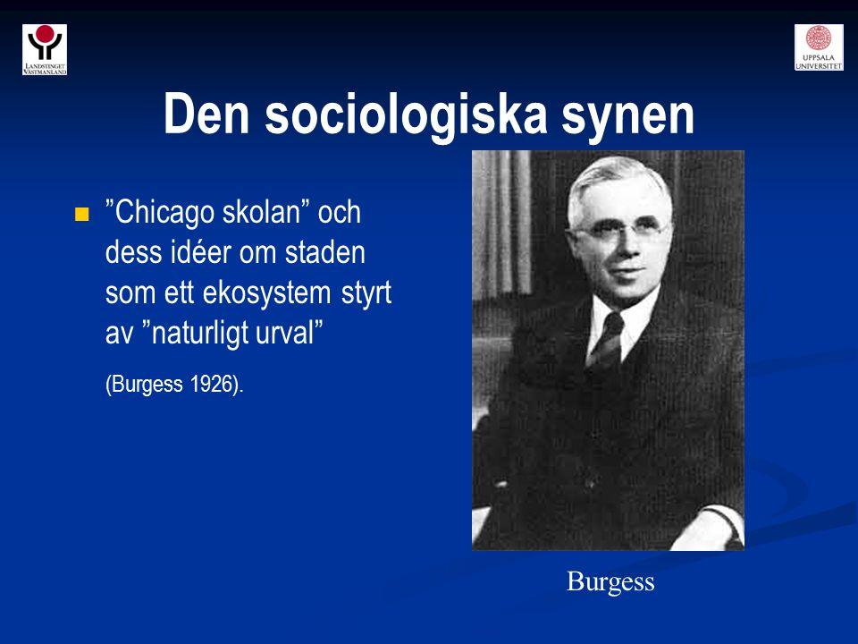 """""""Chicago skolan"""" och dess idéer om staden som ett ekosystem styrt av """"naturligt urval"""" (Burgess 1926). Burgess Den sociologiska synen"""