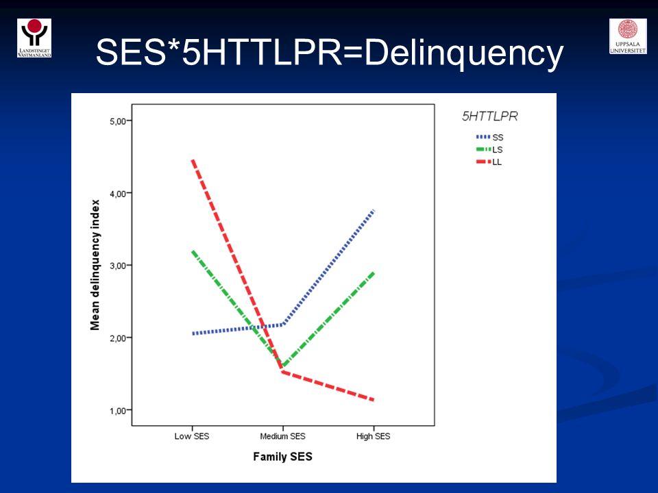 SES*5HTTLPR=Delinquency manuskript