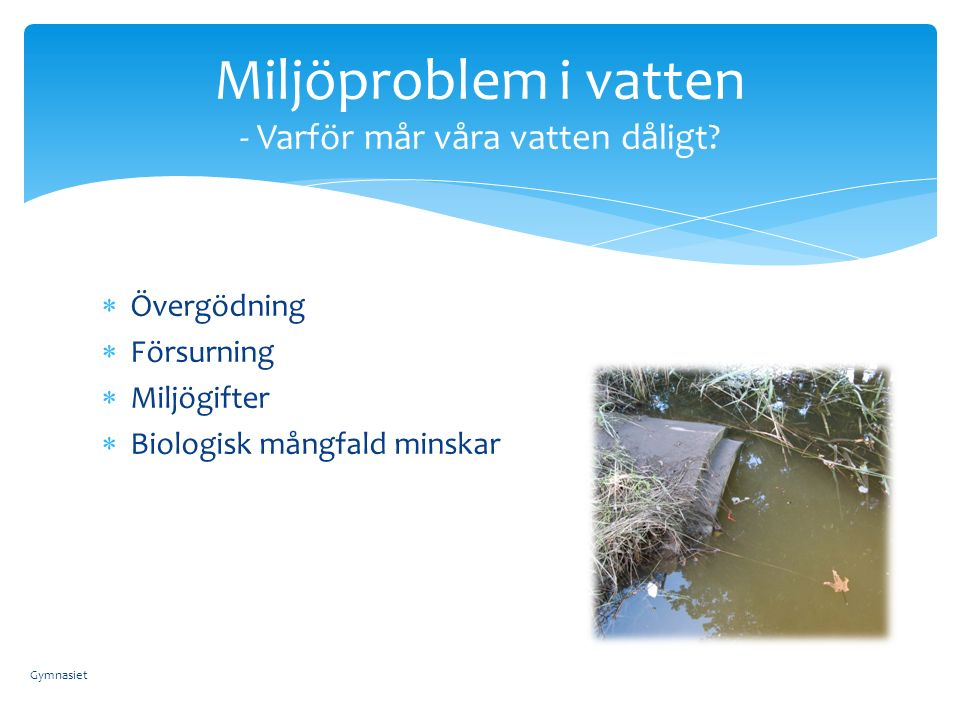  Övergödning  Försurning  Miljögifter  Biologisk mångfald minskar Miljöproblem i vatten - Varför mår våra vatten dåligt.