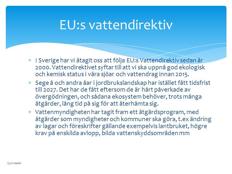 EU:s vattendirektiv  I Sverige har vi åtagit oss att följa EU:s Vattendirektiv sedan år 2000.