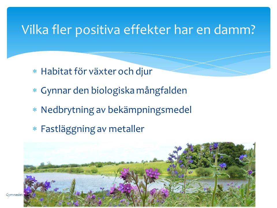  Habitat för växter och djur  Gynnar den biologiska mångfalden  Nedbrytning av bekämpningsmedel  Fastläggning av metaller Vilka fler positiva effekter har en damm.