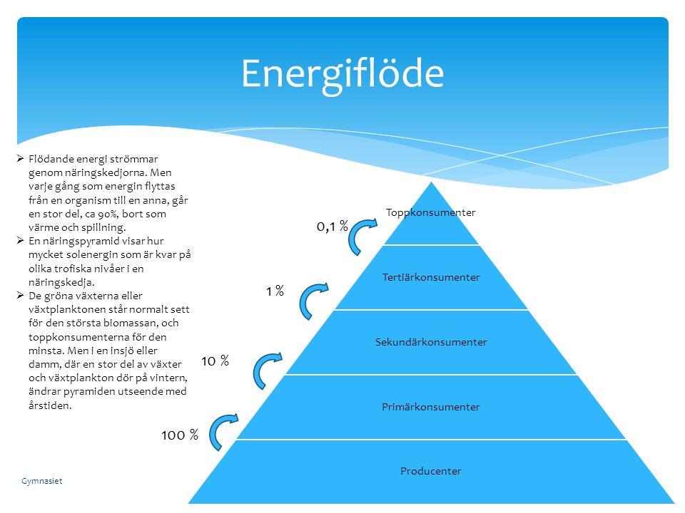 Energiflöde  Flödande energi strömmar genom näringskedjorna. Men varje gång som energin flyttas från en organism till en anna, går en stor del, ca 90