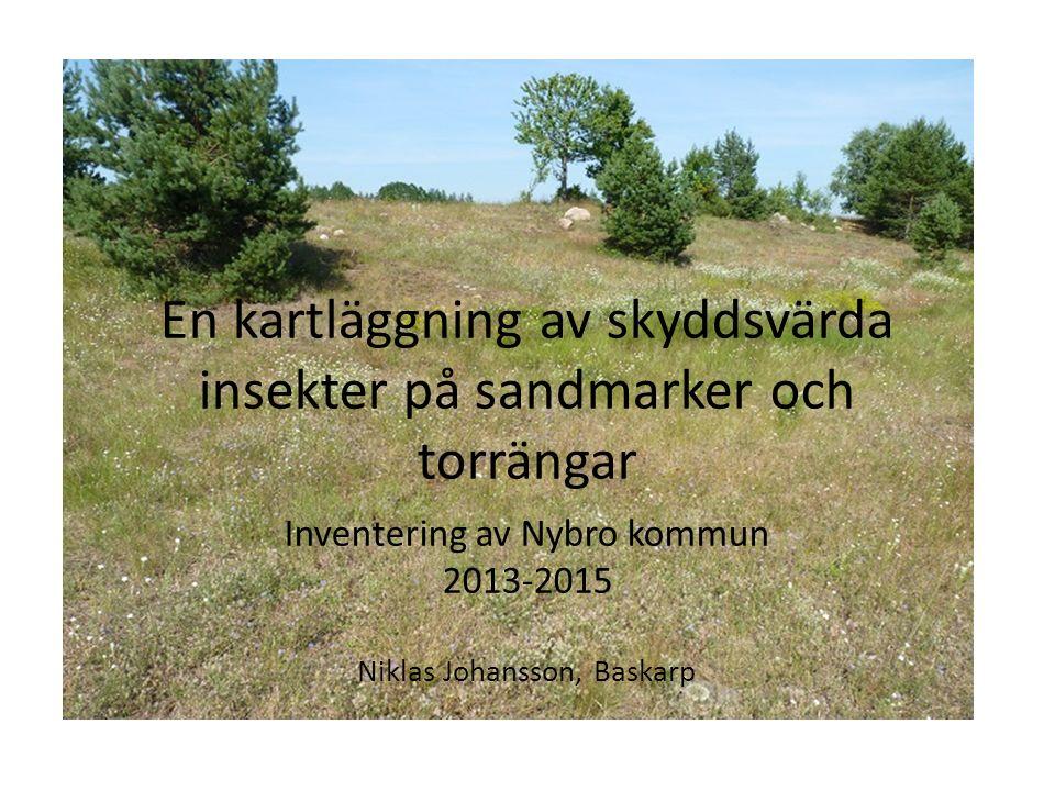 En kartläggning av skyddsvärda insekter på sandmarker och torrängar Inventering av Nybro kommun 2013-2015 Niklas Johansson, Baskarp
