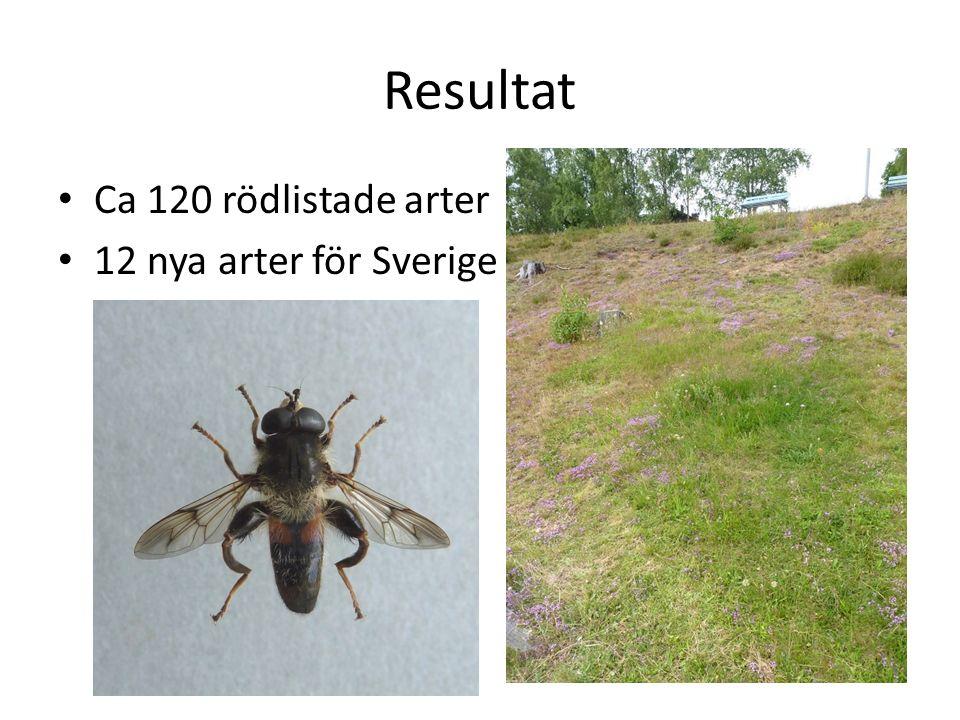 Resultat Ca 120 rödlistade arter 12 nya arter för Sverige