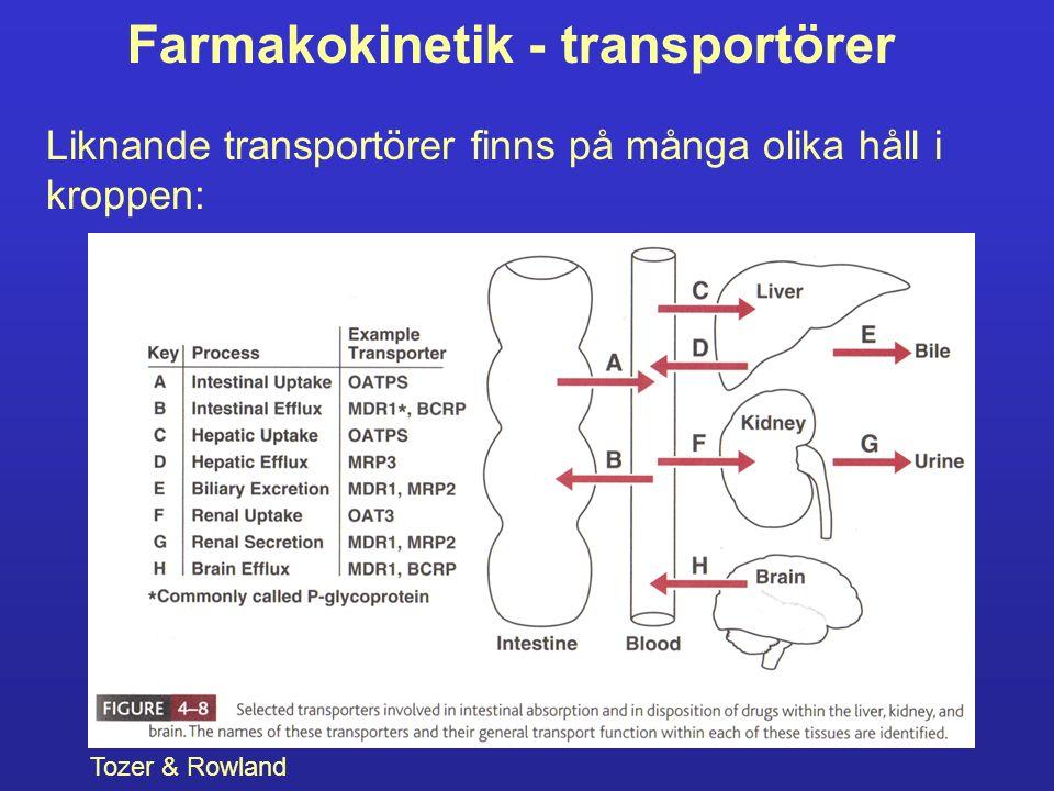 Farmakokinetik - transportörer Liknande transportörer finns på många olika håll i kroppen: Tozer & Rowland