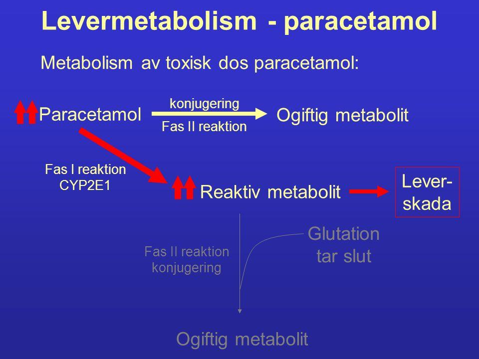 Levermetabolism - paracetamol Paracetamol Ogiftig metabolit Fas II reaktion konjugering Reaktiv metabolit Fas I reaktion CYP2E1 Ogiftig metabolit Fas