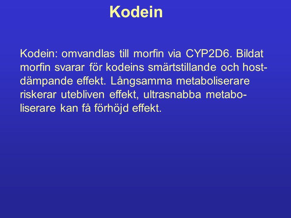 Kodein Kodein: omvandlas till morfin via CYP2D6. Bildat morfin svarar för kodeins smärtstillande och host- dämpande effekt. Långsamma metaboliserare r