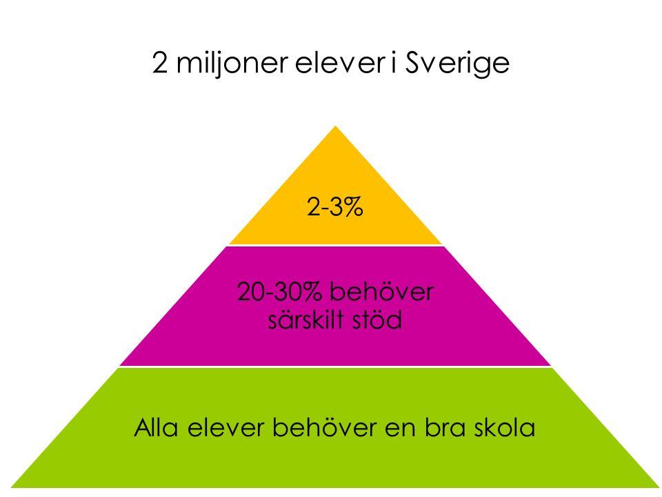 2 miljoner elever i Sverige 2-3% 20-30% behöver särskilt stöd Alla elever behöver en bra skola