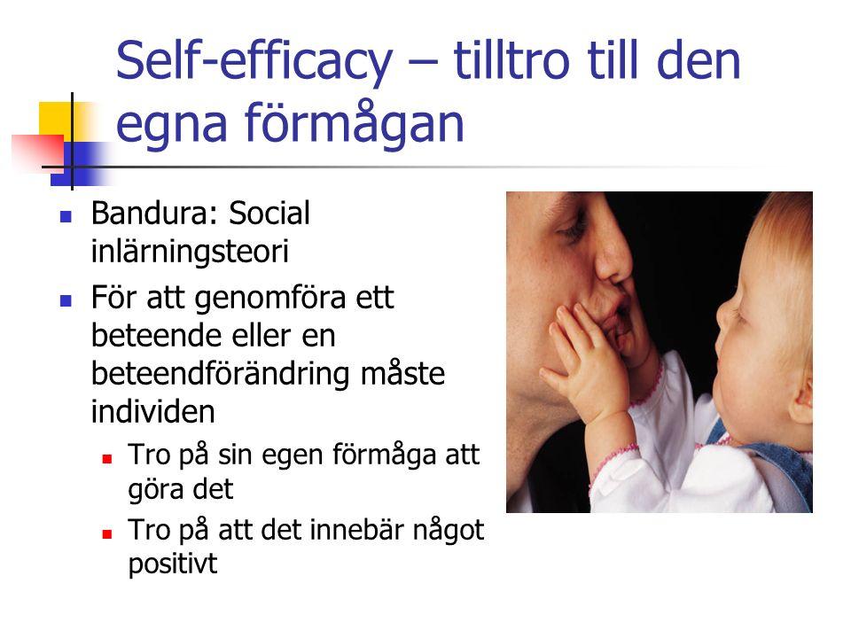 Self-efficacy – tilltro till den egna förmågan Bandura: Social inlärningsteori För att genomföra ett beteende eller en beteendförändring måste individen Tro på sin egen förmåga att göra det Tro på att det innebär något positivt