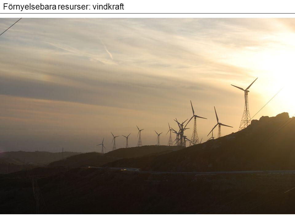 Förnyelsebara resurser: vindkraft