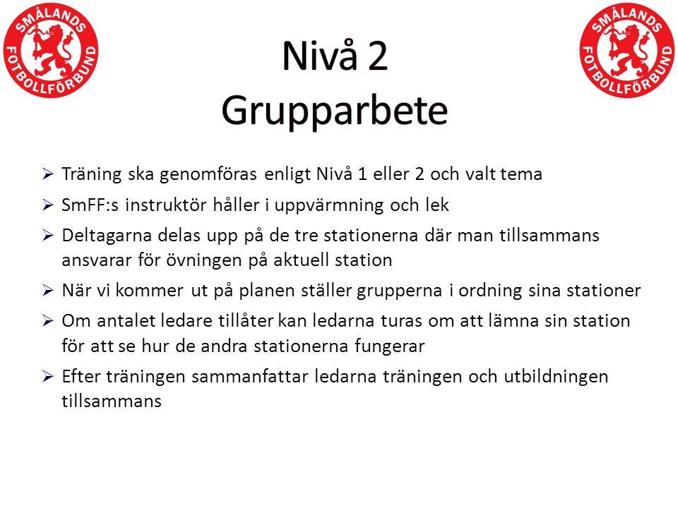  Träning ska genomföras enligt Nivå 1 eller 2 och valt tema  SmFF:s instruktör håller i uppvärmning och lek  Deltagarna delas upp på de tre station