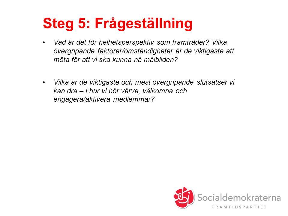 Steg 5: Frågeställning Vad är det för helhetsperspektiv som framträder.