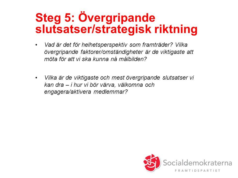 Steg 5: Övergripande slutsatser/strategisk riktning Vad är det för helhetsperspektiv som framträder.