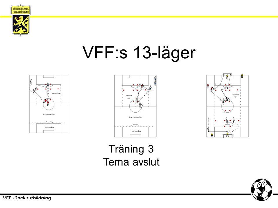 VFF:s 13-läger VFF - Spelarutbildning Träning 3 Tema avslut