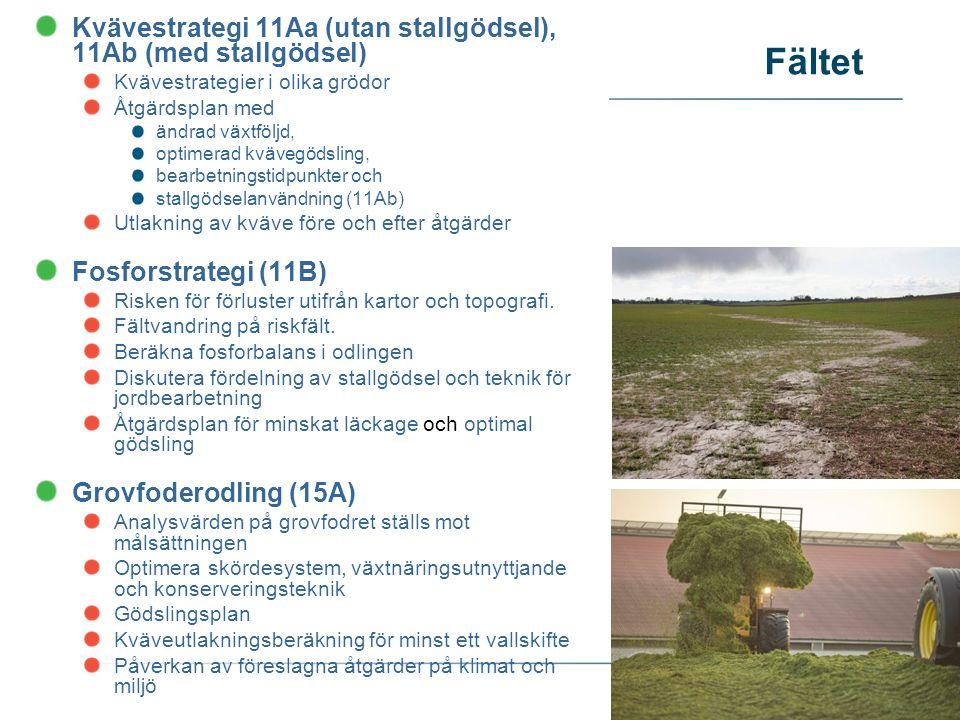 Fältet Kvävestrategi 11Aa (utan stallgödsel), 11Ab (med stallgödsel) Kvävestrategier i olika grödor Åtgärdsplan med ändrad växtföljd, optimerad kvävegödsling, bearbetningstidpunkter och stallgödselanvändning (11Ab) Utlakning av kväve före och efter åtgärder Fosforstrategi (11B) Risken för förluster utifrån kartor och topografi.
