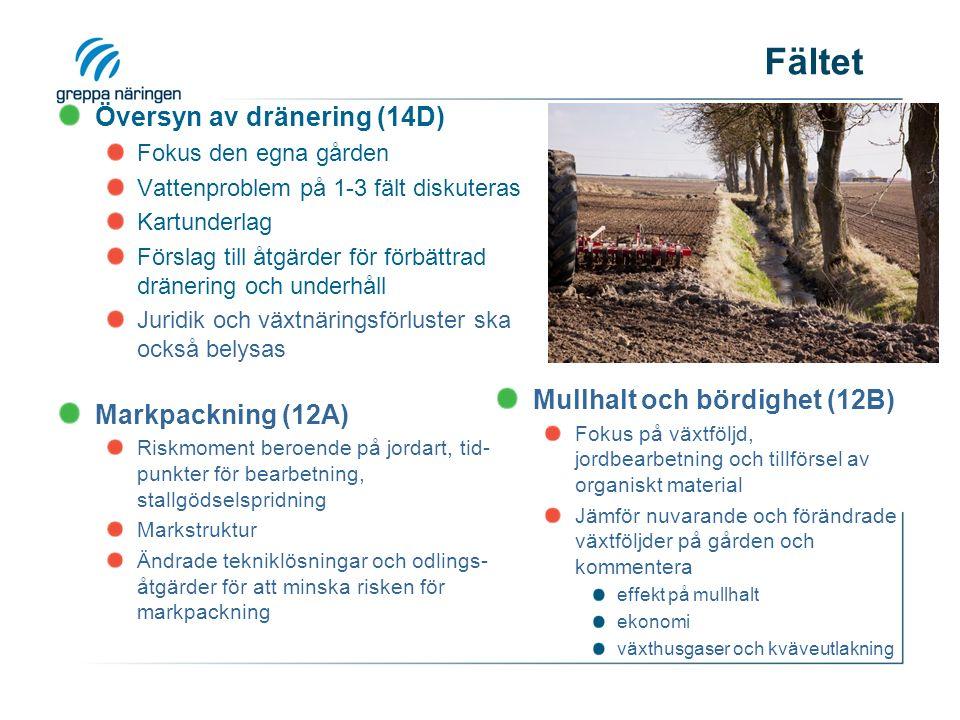 Fältet Översyn av dränering (14D) Fokus den egna gården Vattenproblem på 1-3 fält diskuteras Kartunderlag Förslag till åtgärder för förbättrad dränering och underhåll Juridik och växtnäringsförluster ska också belysas Markpackning (12A) Riskmoment beroende på jordart, tid- punkter för bearbetning, stallgödselspridning Markstruktur Ändrade tekniklösningar och odlings- åtgärder för att minska risken för markpackning Mullhalt och bördighet (12B) Fokus på växtföljd, jordbearbetning och tillförsel av organiskt material Jämför nuvarande och förändrade växtföljder på gården och kommentera effekt på mullhalt ekonomi växthusgaser och kväveutlakning