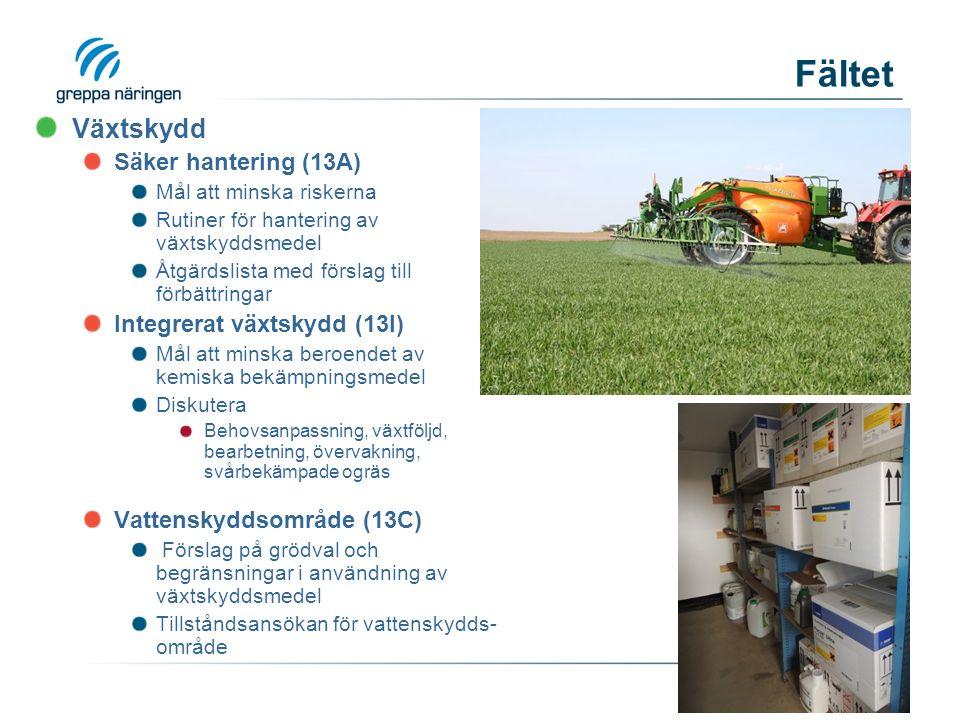 Fältet Växtskydd Säker hantering (13A) Mål att minska riskerna Rutiner för hantering av växtskyddsmedel Åtgärdslista med förslag till förbättringar Integrerat växtskydd (13I) Mål att minska beroendet av kemiska bekämpningsmedel Diskutera Behovsanpassning, växtföljd, bearbetning, övervakning, svårbekämpade ogräs Vattenskyddsområde (13C) Förslag på grödval och begränsningar i användning av växtskyddsmedel Tillståndsansökan för vattenskydds- område