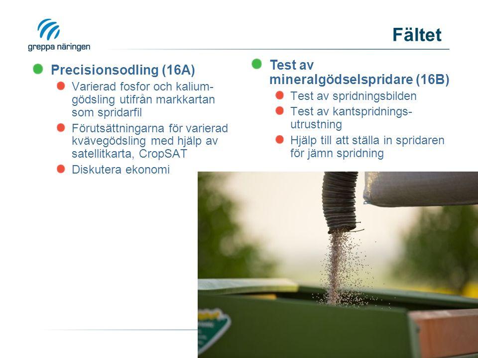 Precisionsodling (16A) Varierad fosfor och kalium- gödsling utifrån markkartan som spridarfil Förutsättningarna för varierad kvävegödsling med hjälp av satellitkarta, CropSAT Diskutera ekonomi Fältet Test av mineralgödselspridare (16B) Test av spridningsbilden Test av kantspridnings- utrustning Hjälp till att ställa in spridaren för jämn spridning