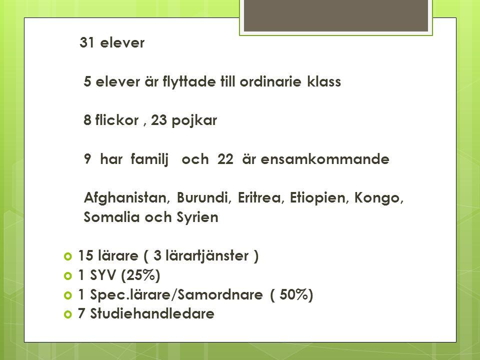 31 elever 5 elever är flyttade till ordinarie klass 8 flickor, 23 pojkar 9 har familj och 22 är ensamkommande Afghanistan, Burundi, Eritrea, Etiopien, Kongo, Somalia och Syrien  15 lärare ( 3 lärartjänster )  1 SYV (25%)  1 Spec.lärare/Samordnare ( 50%)  7 Studiehandledare