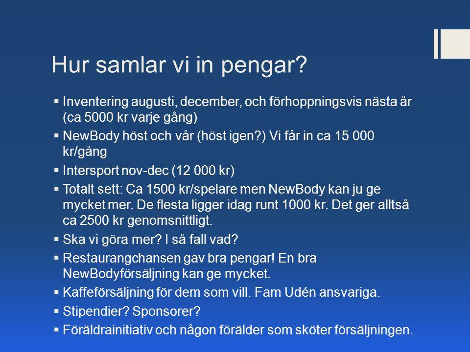 Hur samlar vi in pengar?  Inventering augusti, december, och förhoppningsvis nästa år (ca 5000 kr varje gång)  NewBody höst och vår (höst igen?) Vi