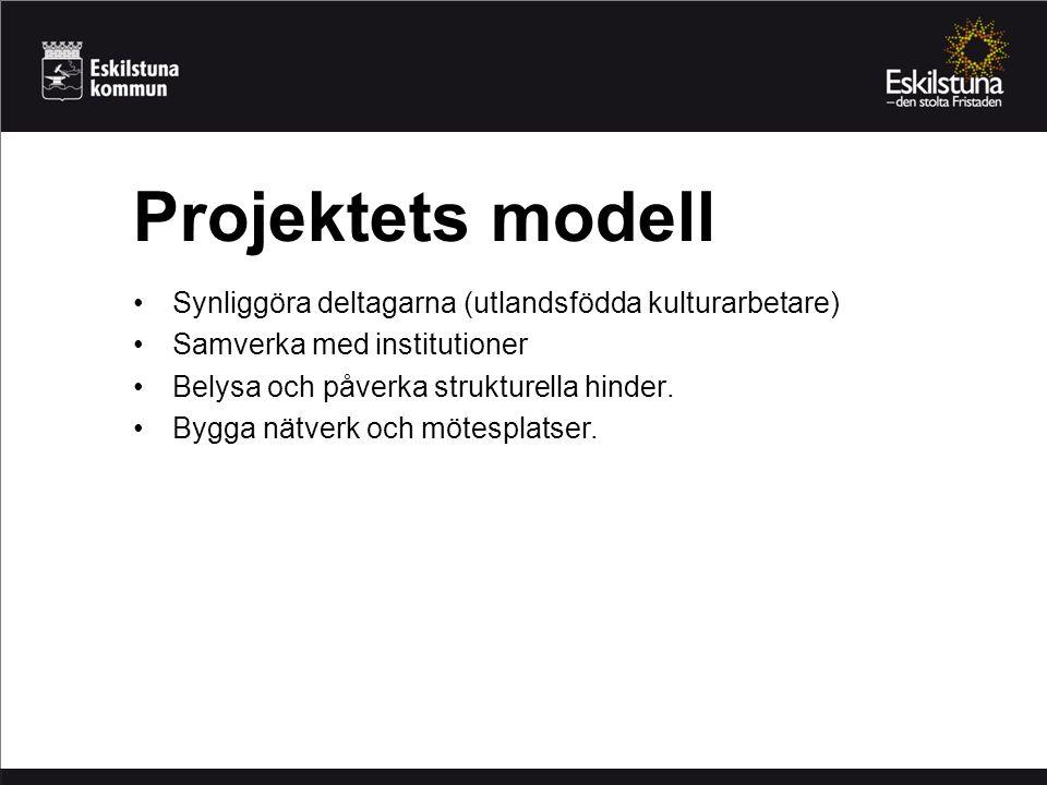 Synliggöra deltagarna (utlandsfödda kulturarbetare) Samverka med institutioner Belysa och påverka strukturella hinder. Bygga nätverk och mötesplatser.