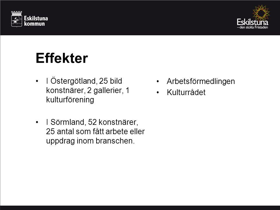I Östergötland, 25 bild konstnärer, 2 gallerier, 1 kulturförening I Sörmland, 52 konstnärer, 25 antal som fått arbete eller uppdrag inom branschen. Ef