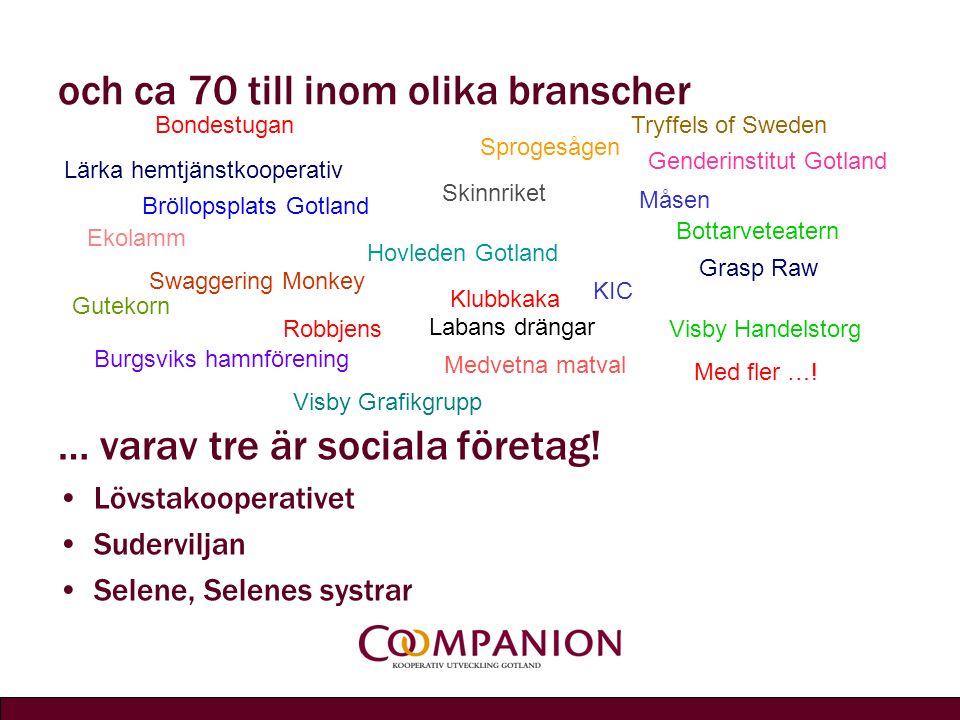 och ca 70 till inom olika branscher … varav tre är sociala företag.
