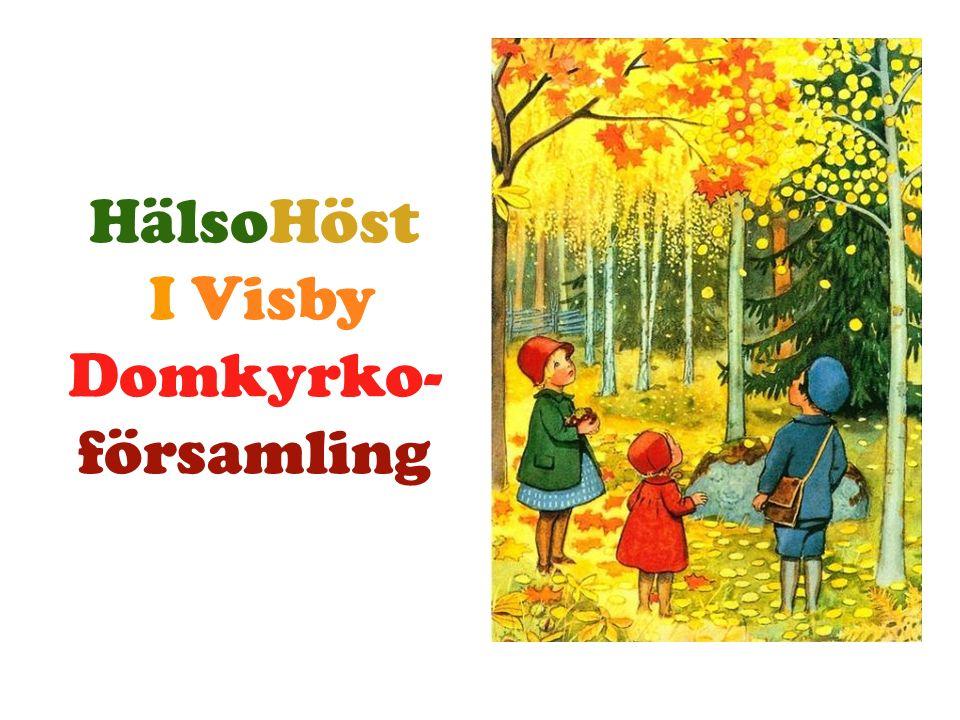 HälsoHöst I Visby Domkyrko- församling