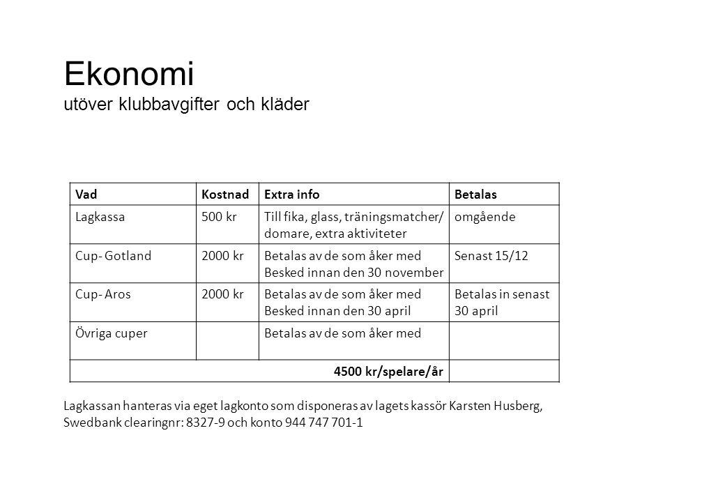 Ekonomi utöver klubbavgifter och kläder VadKostnadExtra infoBetalas Lagkassa500 krTill fika, glass, träningsmatcher/ domare, extra aktiviteter omgåend