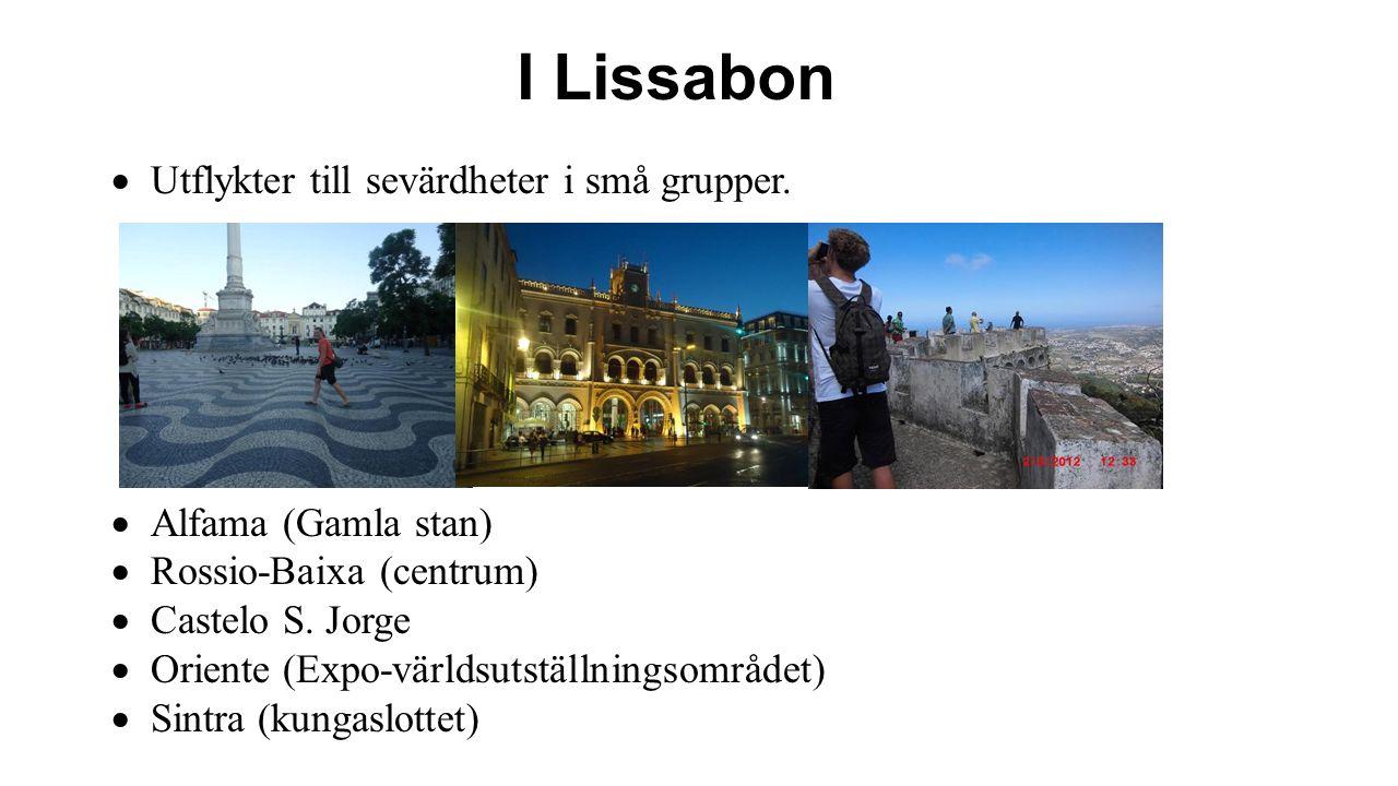 Efter Santa Cruz åker vi mot Lissabon 28- 31/7  Förflyttning till Lissabon – minibuss  Övernattning Hotell