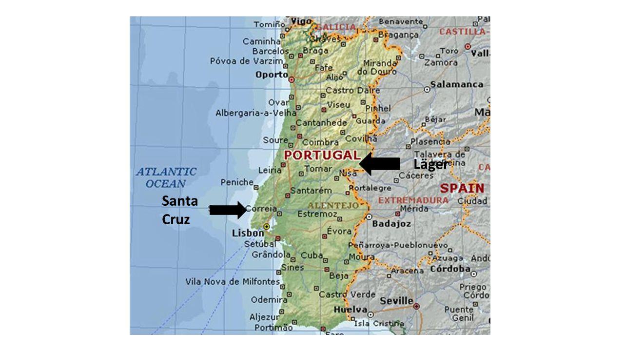 I Lissabon  Utflykter till sevärdheter i små grupper.