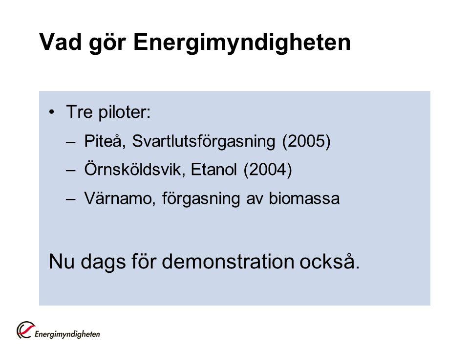 Vad gör Energimyndigheten Tre piloter: –Piteå, Svartlutsförgasning (2005) –Örnsköldsvik, Etanol (2004) –Värnamo, förgasning av biomassa Nu dags för demonstration också.