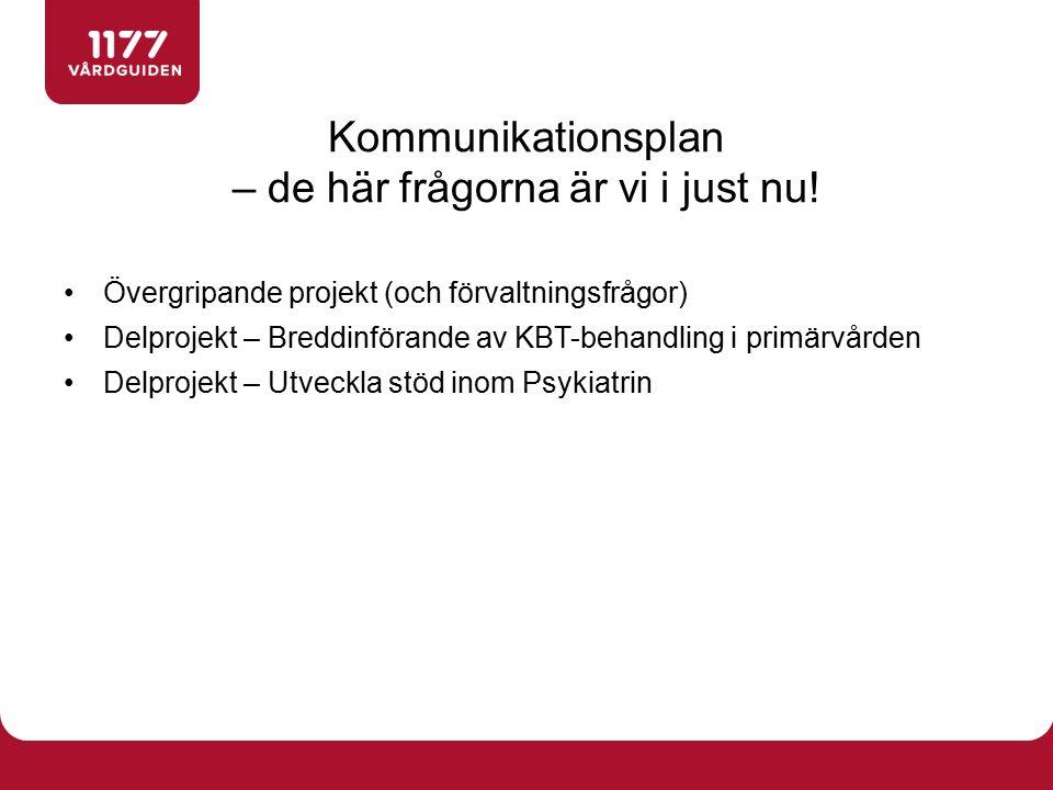 Övergripande projekt (och förvaltningsfrågor) Delprojekt – Breddinförande av KBT-behandling i primärvården Delprojekt – Utveckla stöd inom Psykiatrin Kommunikationsplan – de här frågorna är vi i just nu!