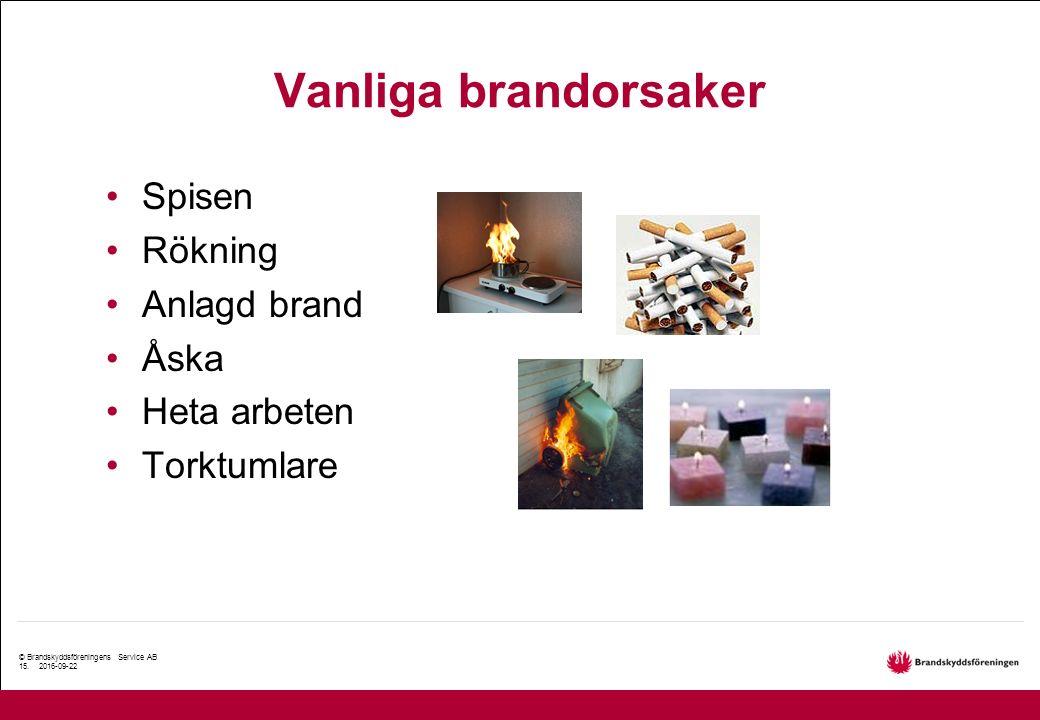 © Brandskyddsföreningens Service AB 15. 2016-09-22 Vanliga brandorsaker Spisen Rökning Anlagd brand Åska Heta arbeten Torktumlare