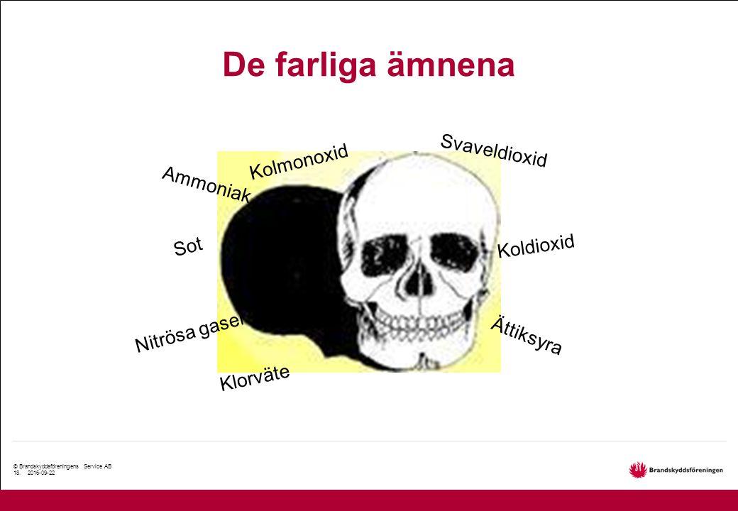 © Brandskyddsföreningens Service AB 18.