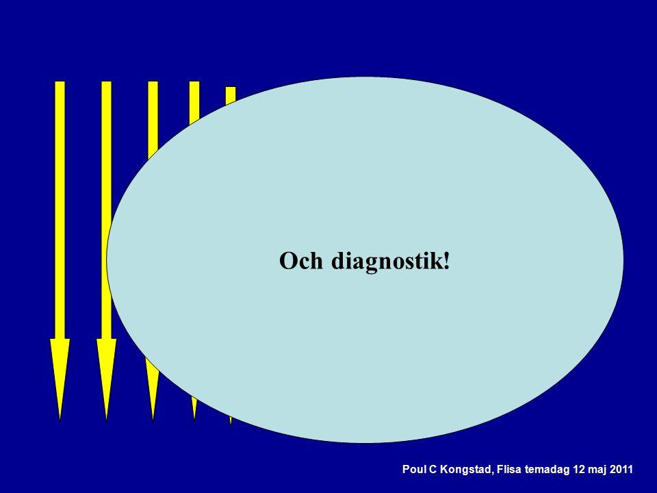 Poul C Kongstad, Flisa temadag 12 maj 2011 Och diagnostik!