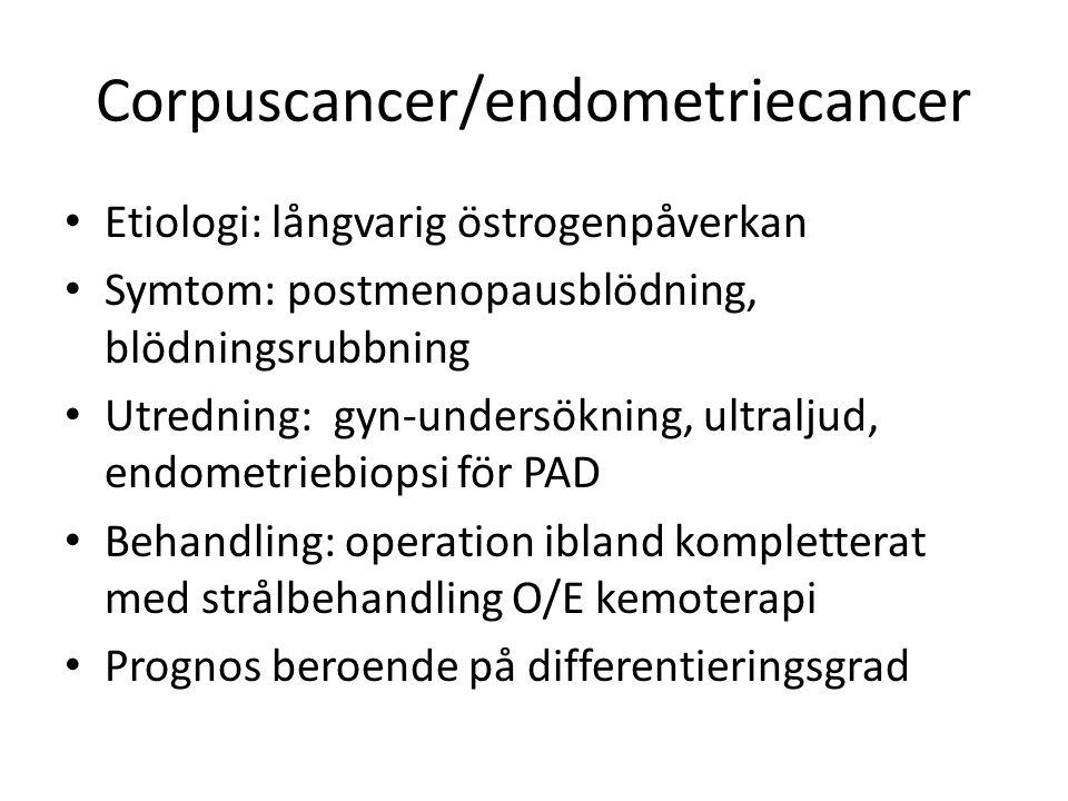 Corpuscancer/endometriecancer Etiologi: långvarig östrogenpåverkan Symtom: postmenopausblödning, blödningsrubbning Utredning: gyn-undersökning, ultraljud, endometriebiopsi för PAD Behandling: operation ibland kompletterat med strålbehandling O/E kemoterapi Prognos beroende på differentieringsgrad