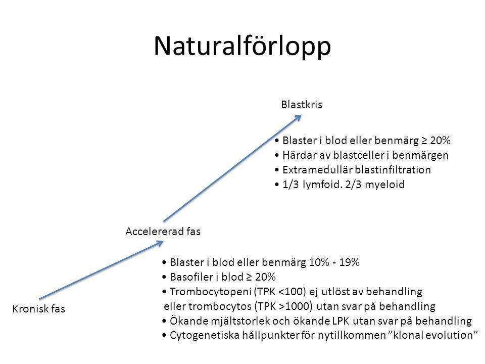 Naturalförlopp Kronisk fas Accelererad fas Blastkris Blaster i blod eller benmärg 10% - 19% Basofiler i blod ≥ 20% Trombocytopeni (TPK <100) ej utlöst