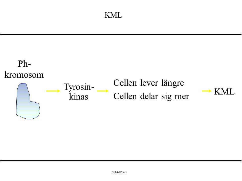2014-05-27 Ph- kromosom Tyrosin- kinas Cellen lever längre Cellen delar sig mer KML