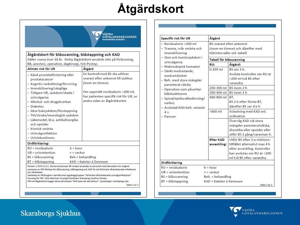 Skaraborgs Sjukhus Åtgärdskort
