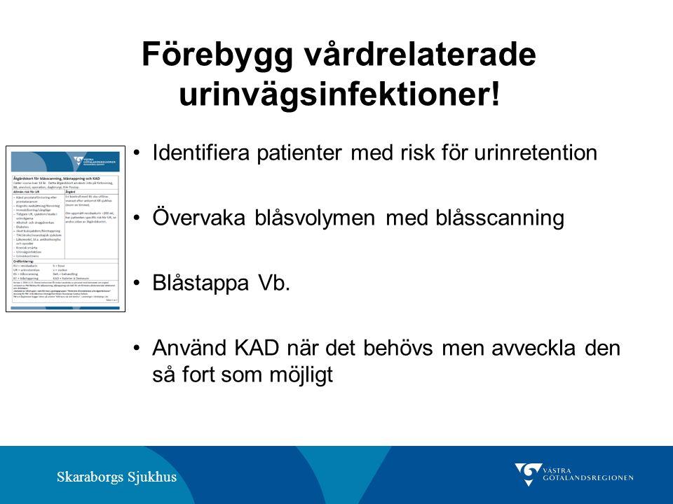 Skaraborgs Sjukhus Förebygg vårdrelaterade urinvägsinfektioner! Identifiera patienter med risk för urinretention Övervaka blåsvolymen med blåsscanning