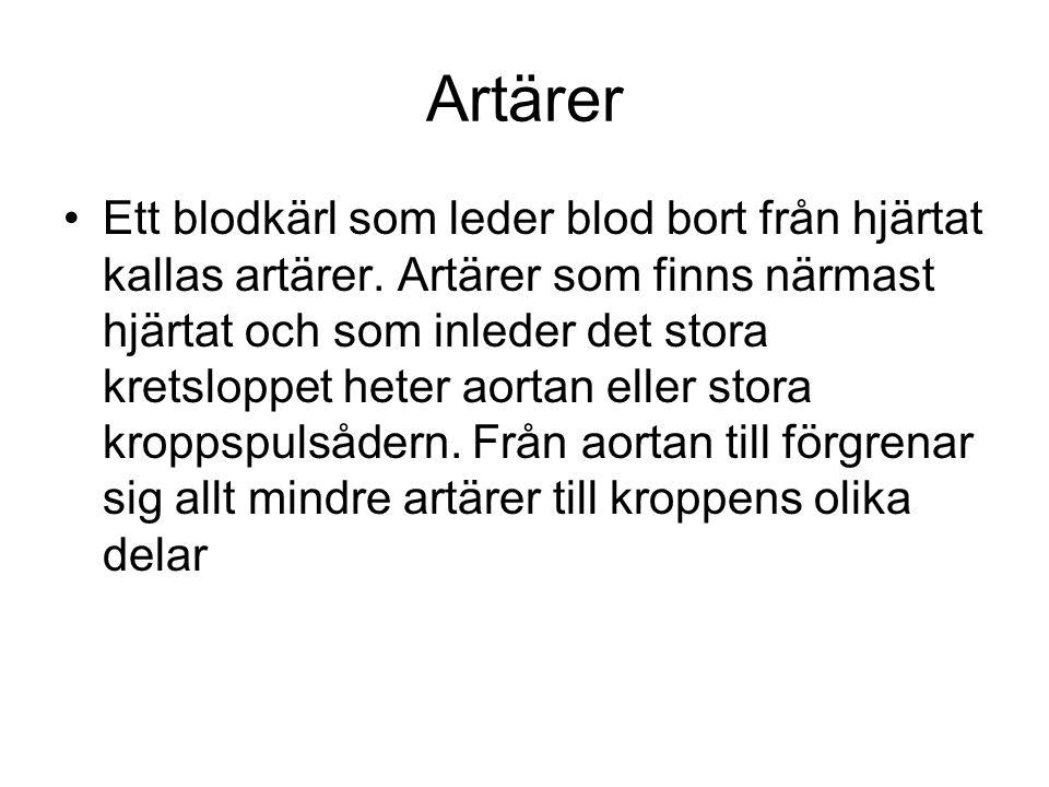 Artärer Ett blodkärl som leder blod bort från hjärtat kallas artärer.