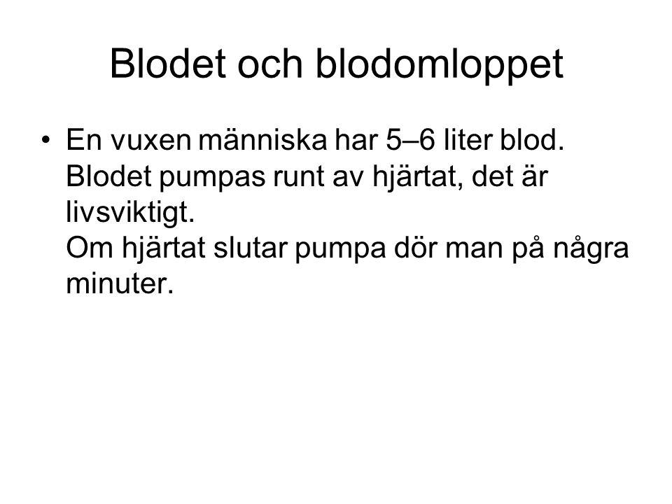 Blodet och blodomloppet En vuxen människa har 5–6 liter blod.