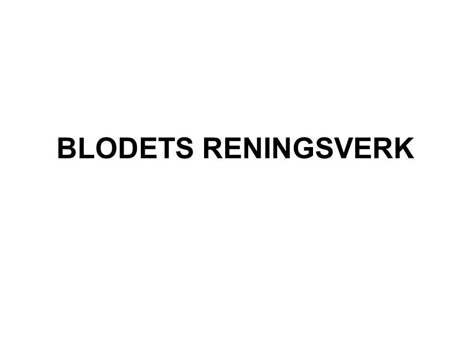 BLODETS RENINGSVERK