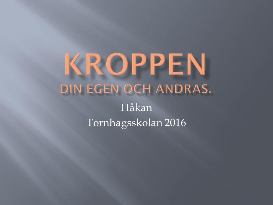 Håkan Tornhagsskolan 2016