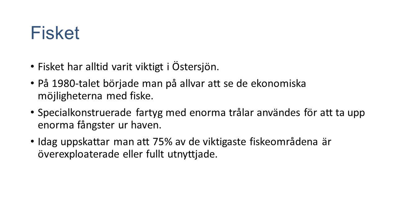 Fisket Fisket har alltid varit viktigt i Östersjön.
