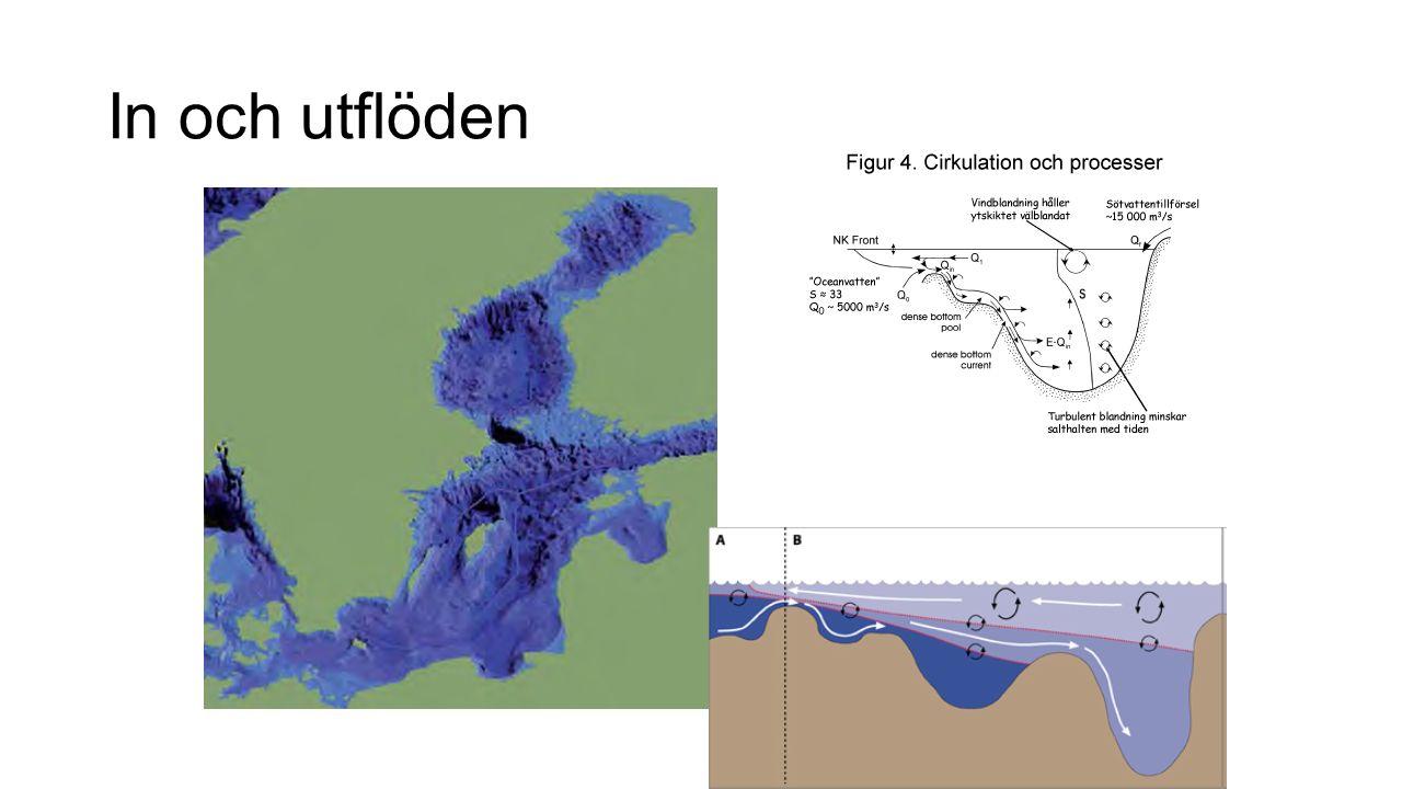 Avrinningsområdet är 4 ggr så stort som havet.