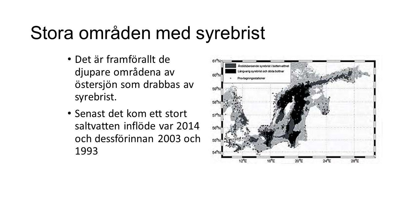 Stora områden med syrebrist Det är framförallt de djupare områdena av östersjön som drabbas av syrebrist.