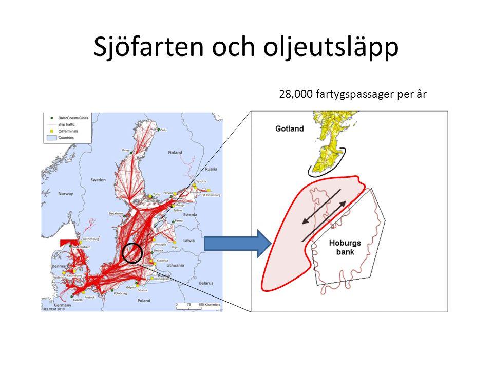 Sjöfarten och oljeutsläpp 28,000 fartygspassager per år